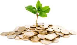 Wealth, Money & Finance
