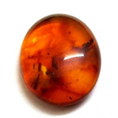 Natural Amber Oval Cabochon 2.50 Carat (AR-05)