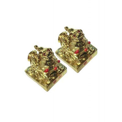 Golden Pi Yao (FEPY-002)