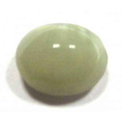 Natural Cat's Eye Oval Cabochon Gemstone  - 5.95 Carat (LE-01)