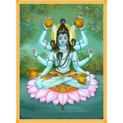 Mahamrityunjaya Yagya Superior