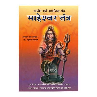 Maheshwar Tantra in Hindi by Dr. Rudradev Tripathi- (BOAS-0917)