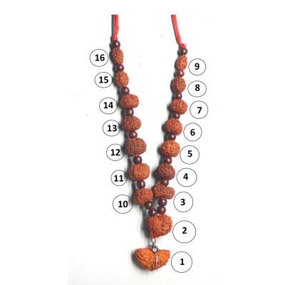 Siddha  Mala (1 to 14 Face, Gaurishankar, Ganesh Rudrakshas)-(MARS-002)- (JAVA)