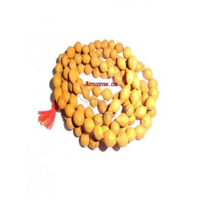 Putrajivi Rosary / Mala - 12 mm (MAPJ-001)