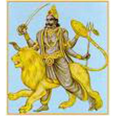 Rahu Yagya Superior