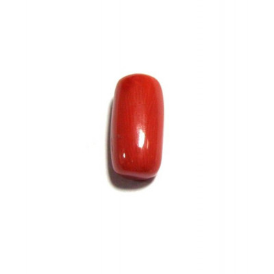 Red Coral Cylindrical - 5.25 Carat (RC-02)