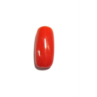 Red Coral Cylindrical - 5.00 Carat (RC-05)