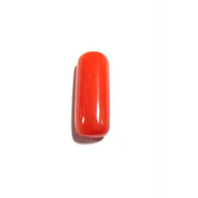 Red Coral Cylindrical - 5.20 Carat (RC-12)