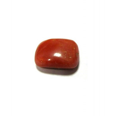 Red Coral Cushion Cabochon - 4.25 Carat (RC-20)