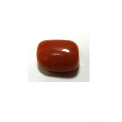 Red Coral Cushion Cabochon - 4.00 Carat (RC-21)