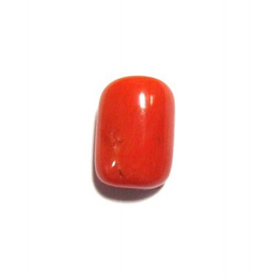 Red Coral Cylindrical - 5.20 Carat (RC-04)