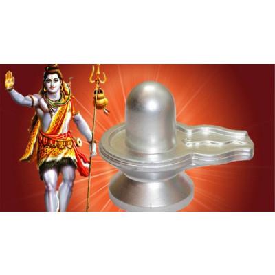 Rudrabhishek Yagya Superior