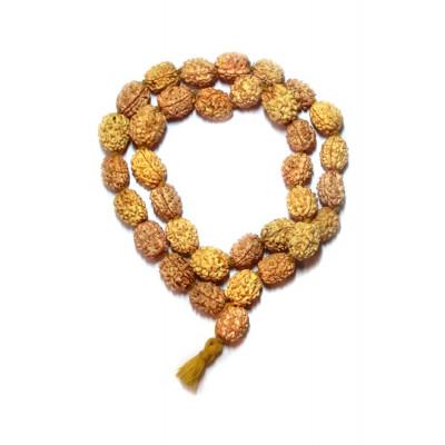 3 Mukhi Rudraksha Kantha / Kanthi Mala (MARU-008)