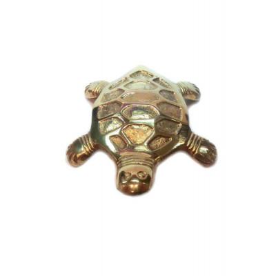 Brass Tortoise - 90 gm (VABT-001)