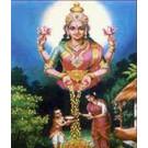 Kanak DharaYagya Superior