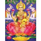 Maha Laksmi Yagya Superior