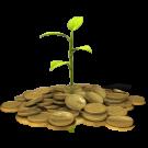 Yagya for prosperity