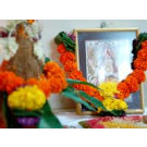 Vastu Shanti Yagya Superior
