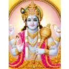 Maha Vishnu Yagya Superior