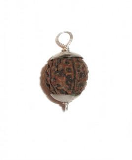 6 MUKHI RUDRAKSHA Silver Pendant With Certificate (RUC06-002/12)