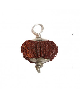 16 MUKHI (Sixteen Face) RUDRAKSHA  Silver Pendant With Certificate (RUC16-001)- (NEPAL)