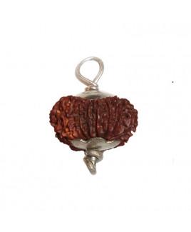 16 MUKHI (Sixteen Face) RUDRAKSHA  Silver Pendant With Certificate (RUC16-001)- (NEPAL)