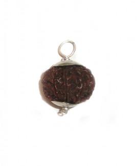 9 MUKHI RUDRAKSHA Silver Pendant With Certificate (RUCP09-002)