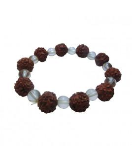 5 Mukhi Rudraksha Crystal Bracelet- (RUCB-001)- (NEPAL)