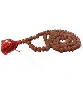 Natural 8 - Mukhi Rudraksha Rosary / Mala With Certificate (Java)- (MARUJ08-001)