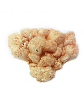 Apophyllite Crystal Quartz Cluster  - 263gm