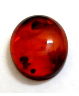 Natural Amber Oval Cabochon 2.90 Carat (AR-01)