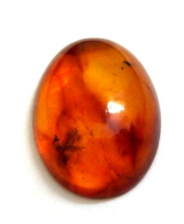 Natural Amber Gemstone Oval Cabochon 2.90 Carat (AR-03)