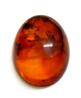 Natural Amber Oval Cabochon Gemstone -3.45 Carat (AR-04)