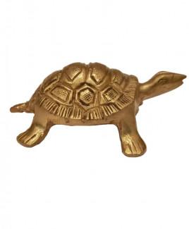 Brass Tortoise - 218 gm (VABT-004)