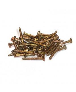 Brass Screw - Small (50)- (PVBSS-001)