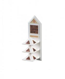 Education Pyramid- (PVED-001)