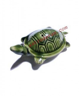 Floating Turtle/ Tortoise