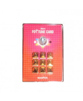 Fortune Card Master -(All In -1) (PVFCM-001)