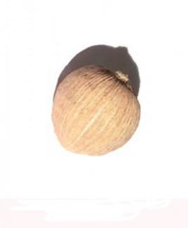 Laghu Nariyal - 2 cm (TALN-001)