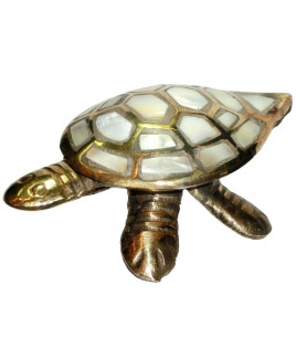 Mother of Pearl Tortoise - 110 gm