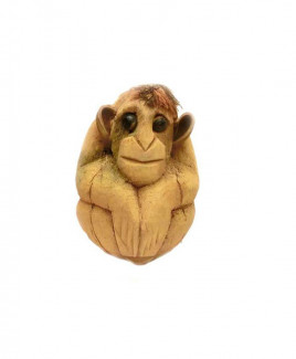 Nariyal / Coconut Monkey - (DINM-001)