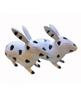 Rabbits -(MVRT-001)
