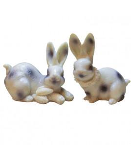 Rabbit- Pair - 222 gm - (MVRT-002)