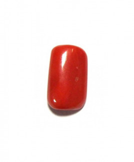Red Coral Cylindrical - 5.25 Carat (RC-01)