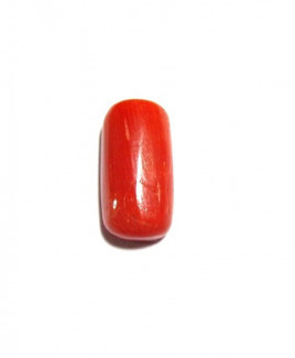 Red Coral Cylindrical - 5.05 Carat (RC-06)