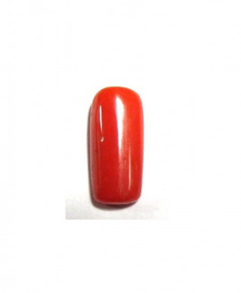 Red Coral Cylindrical - 4.70 Carat (RC-10)