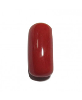 Red Coral Cylindrical - 10.55 Carat (RC-29)