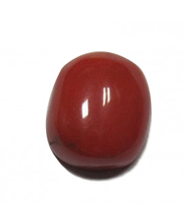 Red Coral Cushion cabochon - 8.15 Carat (RC-35)