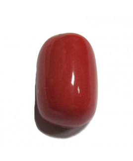 Red Coral Cylindrical - 13.85 Carat (RC-36)