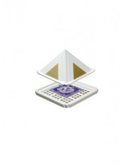 Reiki Pyramid - Master -(HERPM-001)